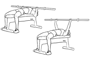 Barbell_Bench_Press1