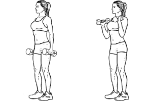 Standing_Dumbbell_Curl1