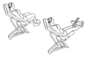 Seated_Machine_Leg_Extensions1